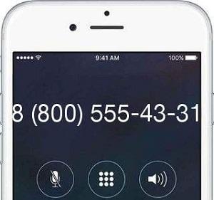 88005554331 что это за телефон и какая организация