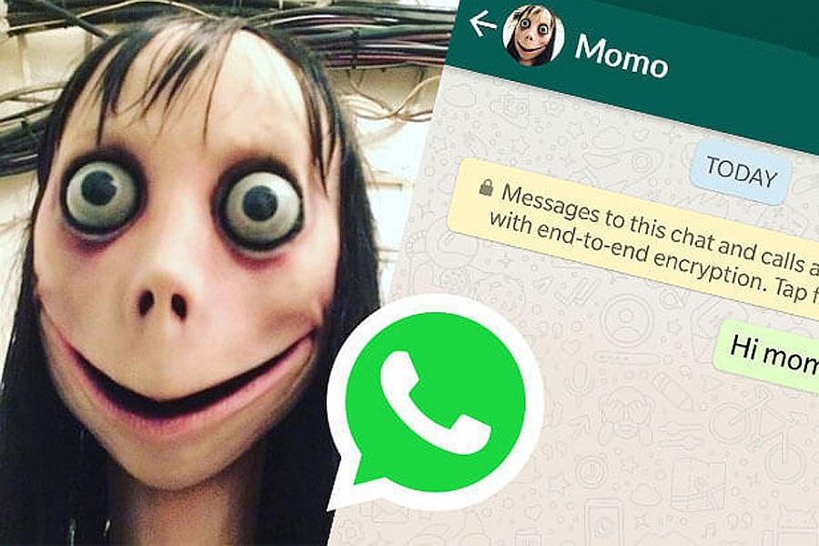 Реальная переписка с Момо в WhatsApp: фото