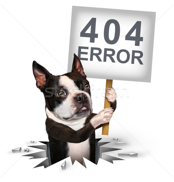 Ошибка 404 страница не найдена – как исправить?