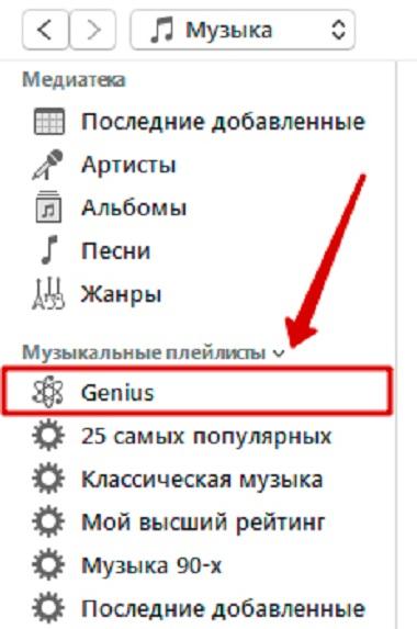 iTunes Genius Playlist
