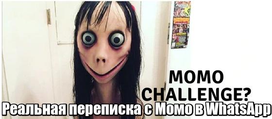 Реальная переписка с Момо в WhatsApp